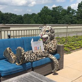 Langley Mascot reading